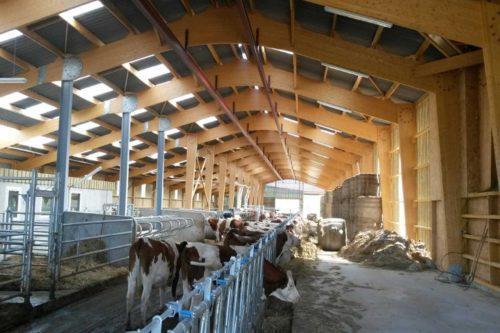 bâtiment séchage en grange charpente bois lamellé collé