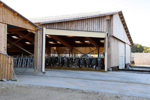 Stabulation vaches laitières - Porte rideau
